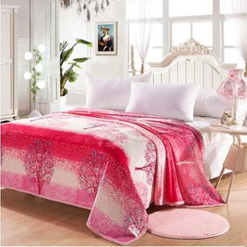 洁帛云貂绒毛毯 毯子1.8米*2米 柔软舒适 温暖贴心