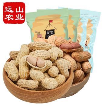 远山农业福建特产零食香酥带壳花生组合2KG蒜香500g*2袋+咸酥500g*2袋