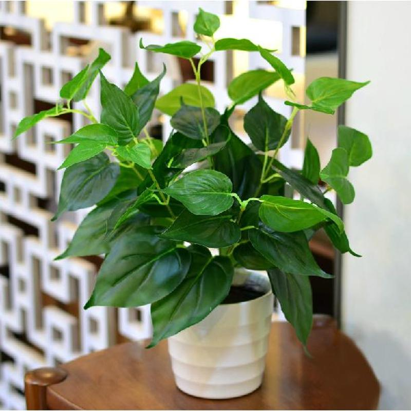 假植物盆景绿植塑料盆栽植物装饰仿真小绿植盆栽室内仿真绿萝包