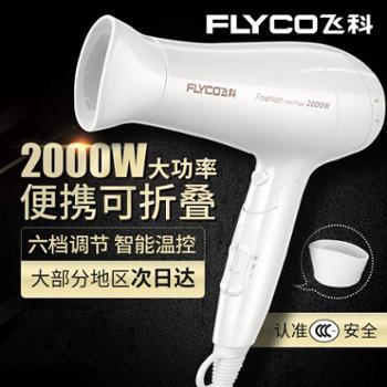 飞科(FLYCO) 电吹风FH6232 2000W大功率