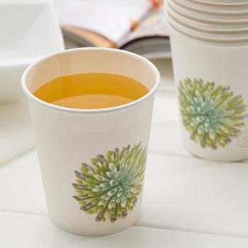 一次性纸杯子 250ml*50只/包 加厚PE防水层处理 不渗漏 可热水 可沏茶