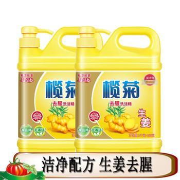 (2瓶)榄菊生姜洗洁精1.1kg/瓶 家庭装厨房果蔬家用 除腥瓶装不伤手