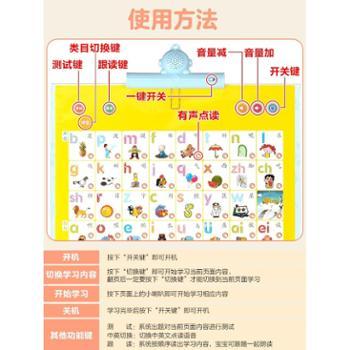 乐乐鱼幼儿童拼音有声挂图早教发声宝宝启蒙充电版语音识字