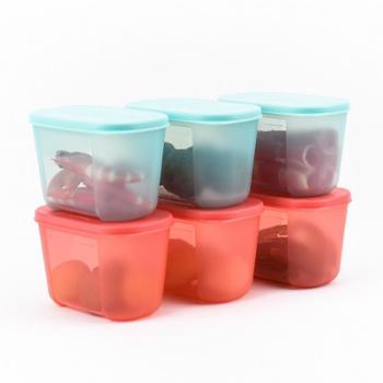 特百惠日日鲜冷冻冷藏深入型300ML密封保鲜盒6件套