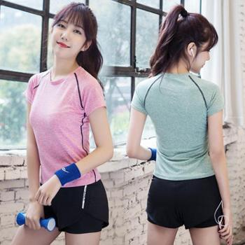 夏季新款吸湿排汗运动速干户外休闲两件套女士跑步健身瑜伽服套装
