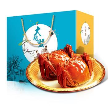 【现货】水中之霸大闸蟹纯公蟹4.0两10只装