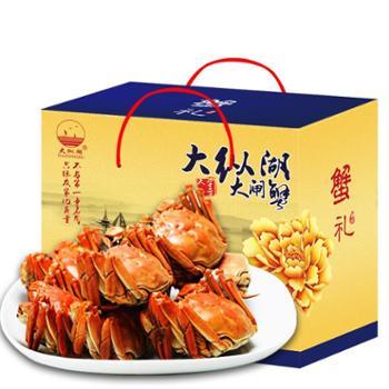 大纵湖 大闸蟹鲜活现货螃蟹礼盒 488型 (公3.0两 母2.0两 4对8只)