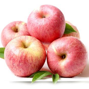 黄土情延安洛川苹果水果苹果新鲜现摘现卖红富士12颗75果