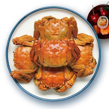 白荡里-枞阳大闸蟹蟹4.0两4只/蟹3.0两4只