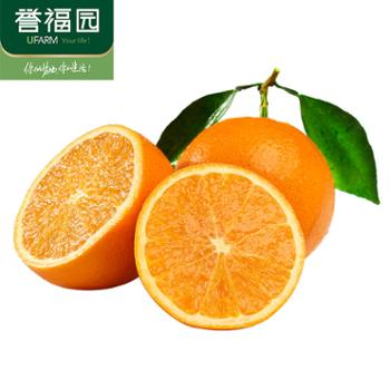 誉福园伦晚脐橙9斤小果装单果果径60-65mm