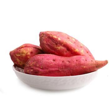 湖北特产红心红薯农家农户番薯5斤烤红薯