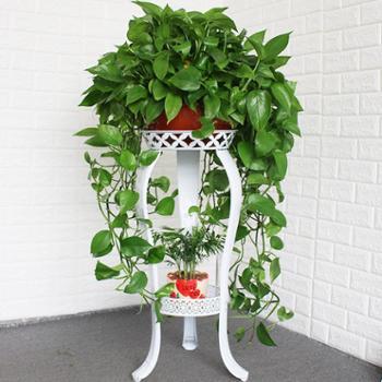 欧式花架铁艺多层室内特价绿萝花架子客厅落地阳台吊兰家用地面