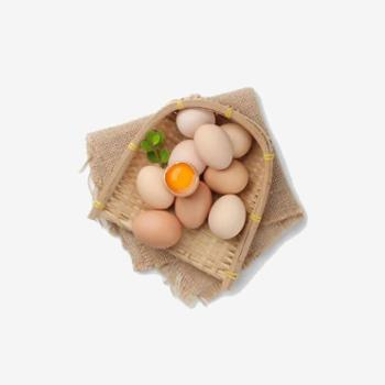 散养土鸡蛋 巫山山林散养30枚草鸡蛋柴鸡蛋本笨鸡蛋破损包赔无忧售后