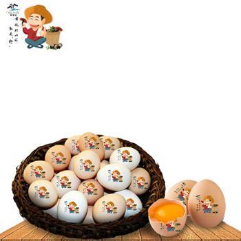 幸福村 农家鸡蛋山林散养鸡蛋一箱20枚