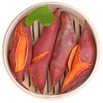 寻走 漳州红薯 中薯 5斤装 150g-300g/个
