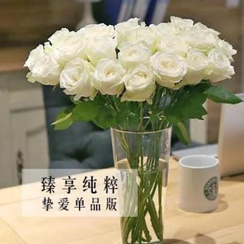 【扶贫鲜花】臻享纯粹单品包月鲜花一月四束丨1种花材丨5-10枝