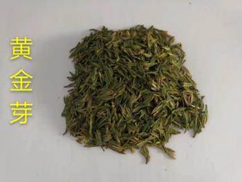武汉大雾山茶业-黄金芽-礼盒装250g