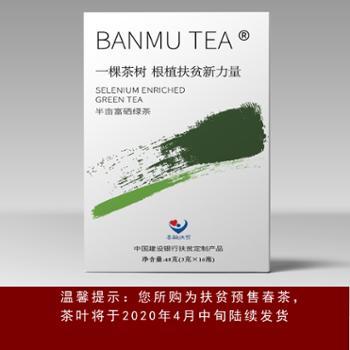 一棵茶树·紫阳富硒绿茶[48克]·预售