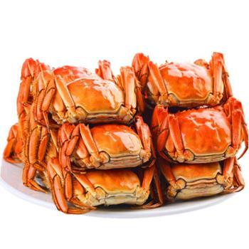 景明 鲜活黄河口大闸蟹8只礼盒装 4.5两公蟹4只,3两母蟹 4只