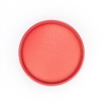 亚信6号工艺印泥盒小号便携印台红色圆形财务专用办公用铁盒印泥