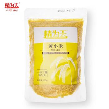 精为天黄小米500g*3包 品质好米 优质粗粮
