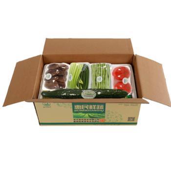 惠民蔬菜应急生态蔬菜包 舒心款 8种日常新鲜蔬菜+葱姜蒜一份 礼品箱泡沫保鲜包装