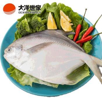 大洋世家/OCEANFAMILY舟山大鲳鱼两条装450g200-250g/条野生鲜冻海鱼