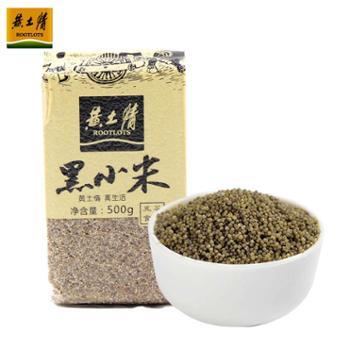 黄土情陕北延安特产黑小米杂粮农家自产黑小米500g小黑米
