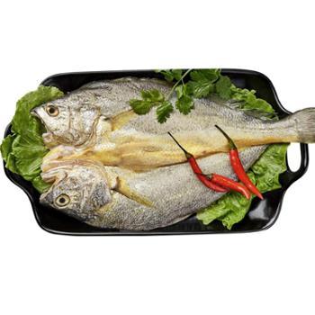 黄渔国咸黄鱼鲞半干水产免杀洗黄花鱼248g*4包