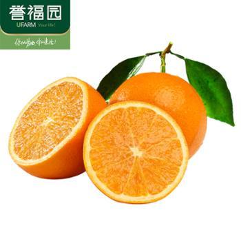 誉福园现摘春橙伦晚橙9斤装单果果径70-80mm