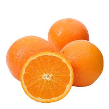 奉节脐橙 果园直采果园70-85mm果径 10斤装
