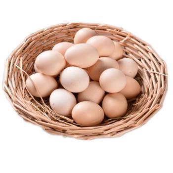 甘山红土鸡蛋农家散养10枚