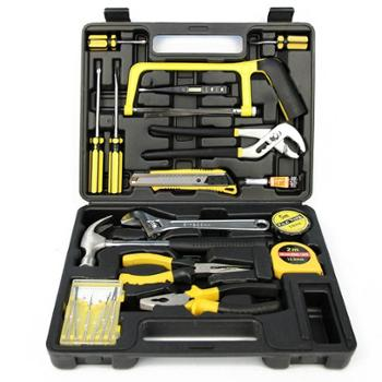 传枫22件套维修工具组合套装家车两用CF-8022