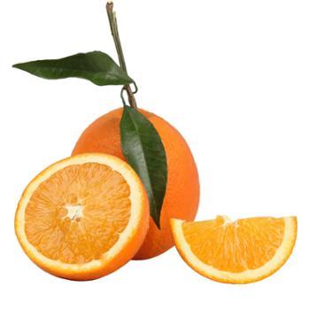 贝纳辰野 奉节脐橙精品6斤 70-80