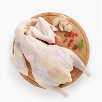稻谷泉 土鸡 自家散养农家新鲜月子鸡2年母鸡 1只 山林散养老母鸡