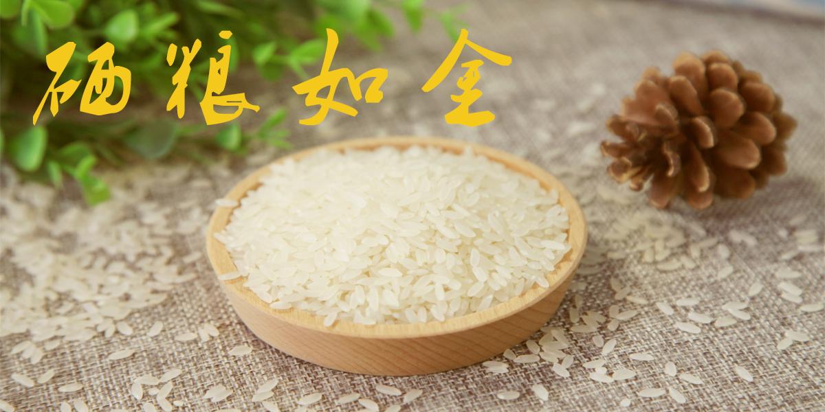 深圳市高玛供应链管理有限公司
