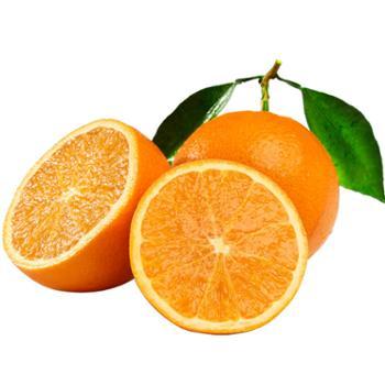 食果源 伦晚脐橙现摘现发 5斤果径70mm(含)-80mm(不含)