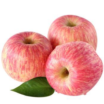 食果源 红富士苹果 5斤装单果70-80mm