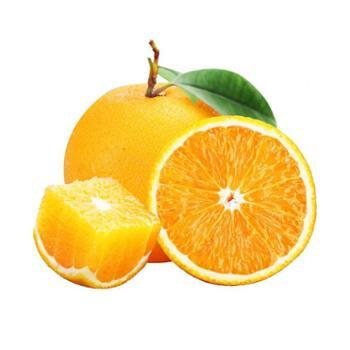 张许秋高山脐橙5斤单果70mm起