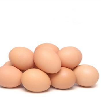 三福利辛土鸡蛋鲜鸡蛋散养鸡蛋60枚