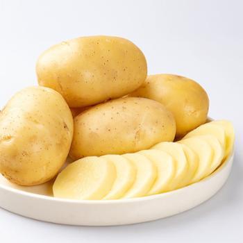 樵歌 湖北高山土豆 10斤/件 鹅蛋大