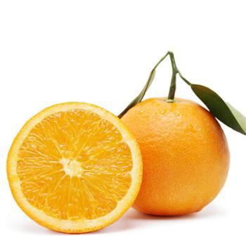 昭君陪嫁新鲜现摘脐橙应季水果橙子5斤装