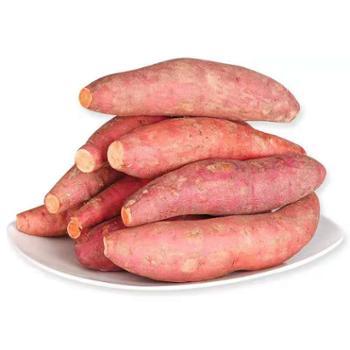鲜果果 六鳌沙地红心蜜薯 5斤装(单果约150g左右)