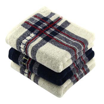 ELLE英伦生活纯棉色纱毛巾两条装ELLE55091M2